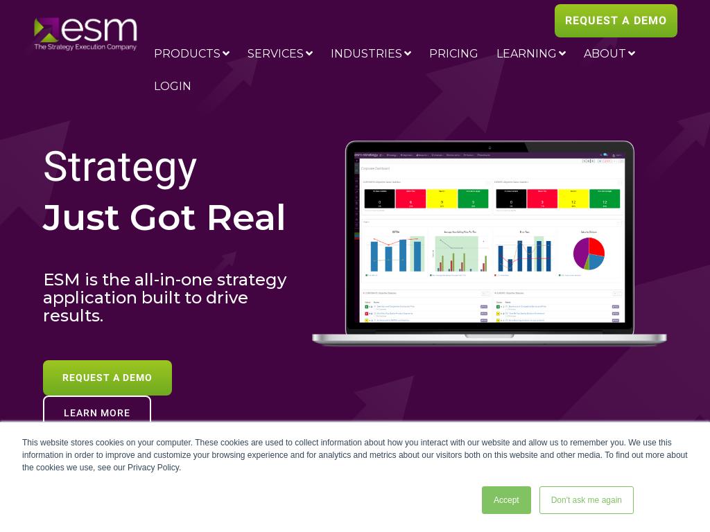 ESM Software Group