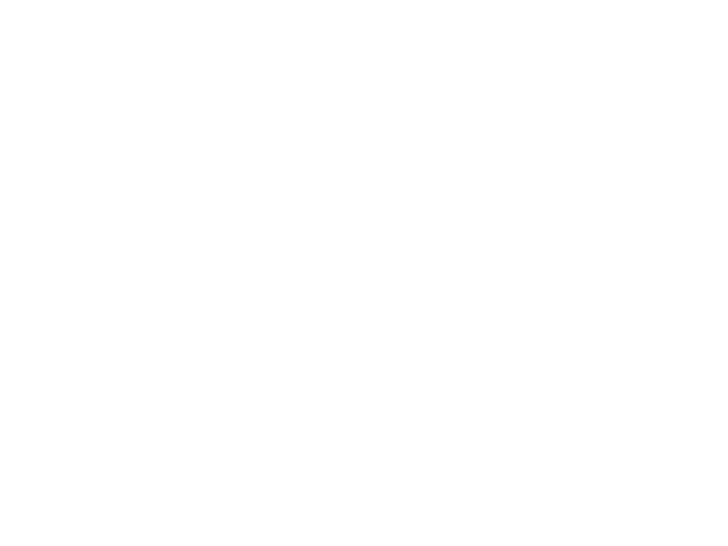 EV Consulting